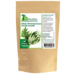 armoise-annuelle-artemisinine-bio-plante-anti-cancer-artemisia-annua-biologiquement-3