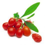 baie-goji-bio-fruit-biologiquement-4