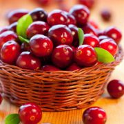 baies-cranberry-bio-canneberge-cranberries-biologiquement-david-hervy-4