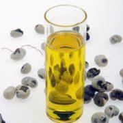 baobab-huile-bio-baoil-baomix-biologiquement-david-hervy-bio