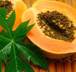 Fruit de papaye ouvert laissant apparaître ces graines riche en antioxydants