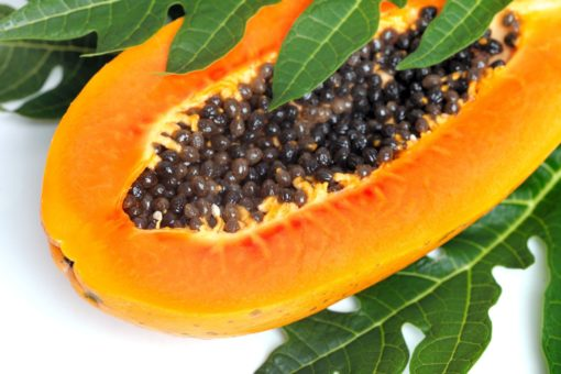 Le fruit de papaye ouvert faisant apparaître les graines anticancer