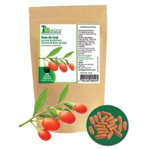 gelules-baie-goji-bio-extrait-concentre-biologiquement