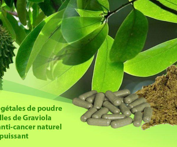 Gélules de feuilles de graviola corossol anticancer