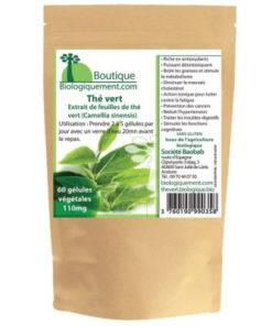 Thé vert biologique en gélules