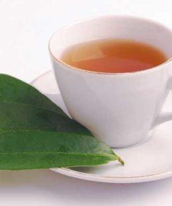 Tisane de feuilles de graviola corossol anticancer