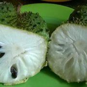 Fruit de graviola corrosol ouvert laissant apparaître ça pulpe anti-cancer