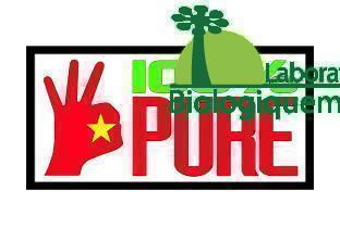 100% pur jus de fruit de graviola corossol produit biologiquement au Vietnam