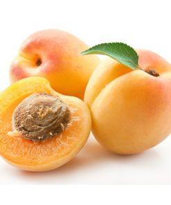 Abricot bio B17