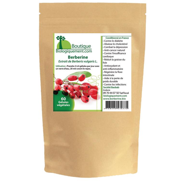 La berbérine bio principe actif extrait du Berberis vulgaris épine-vinette, contre le diabète de type 2 et anti cancer naturel puissant